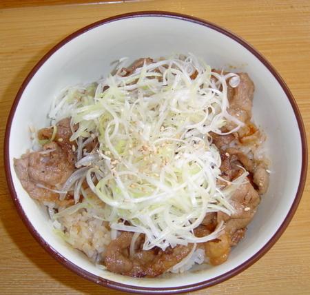 hinoya-negisio-gyukarubidon1.jpg