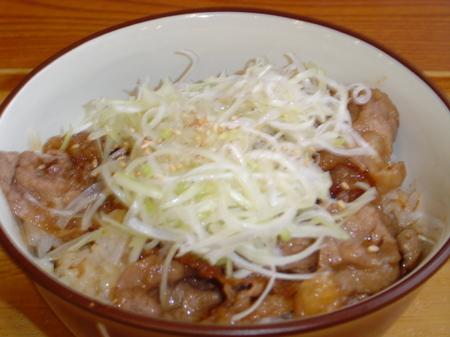 hinoya-negisio-gyukarubidon4.jpg