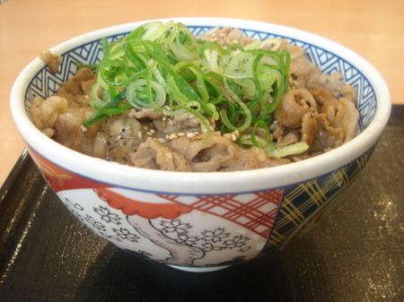 yoshinoya-negishio-gyu-karubidon01.jpg